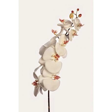Vara orquídea phalaenopsis artificial 105 cm