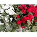Geranio colgante flor artificial.